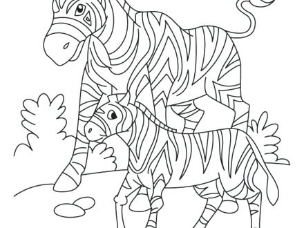 440x330 South Coloring Pages S Free Printable Map Page African Animals