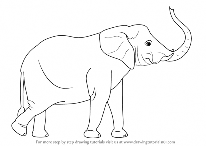671x475 Coloring Pages Elephant Drawing Image Draw African 17 Coloring
