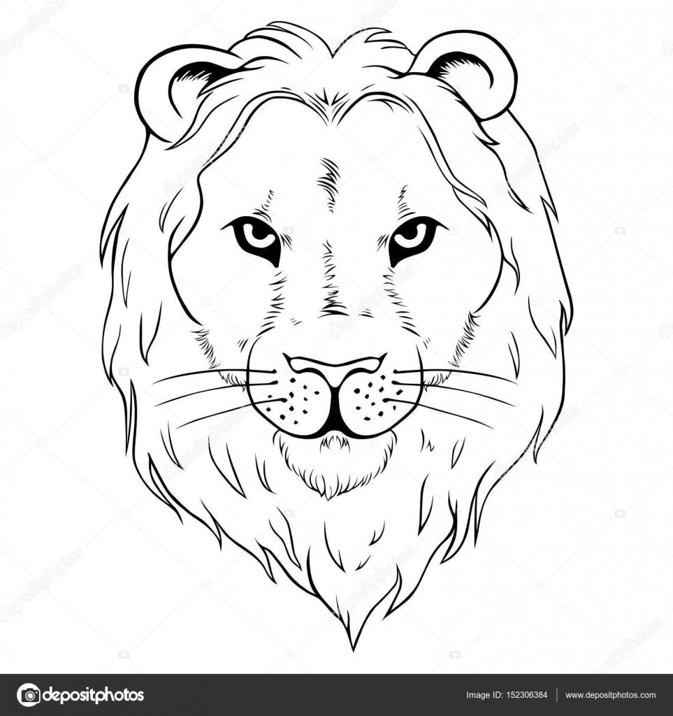 963x1024 African Lion Tattoo Stock Vector Sfpater
