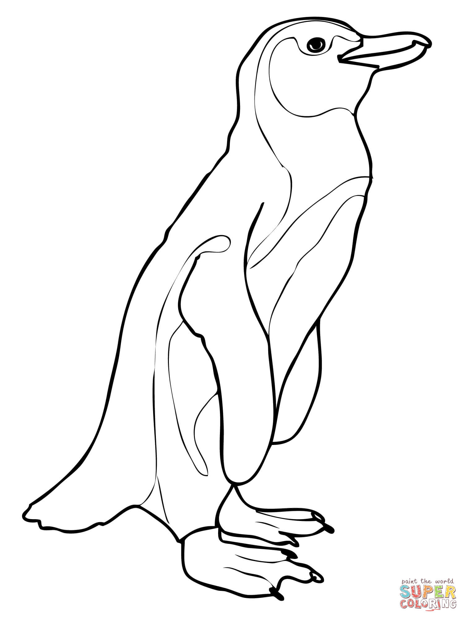1500x2000 African Penguin Coloring Page Free Printable Pages