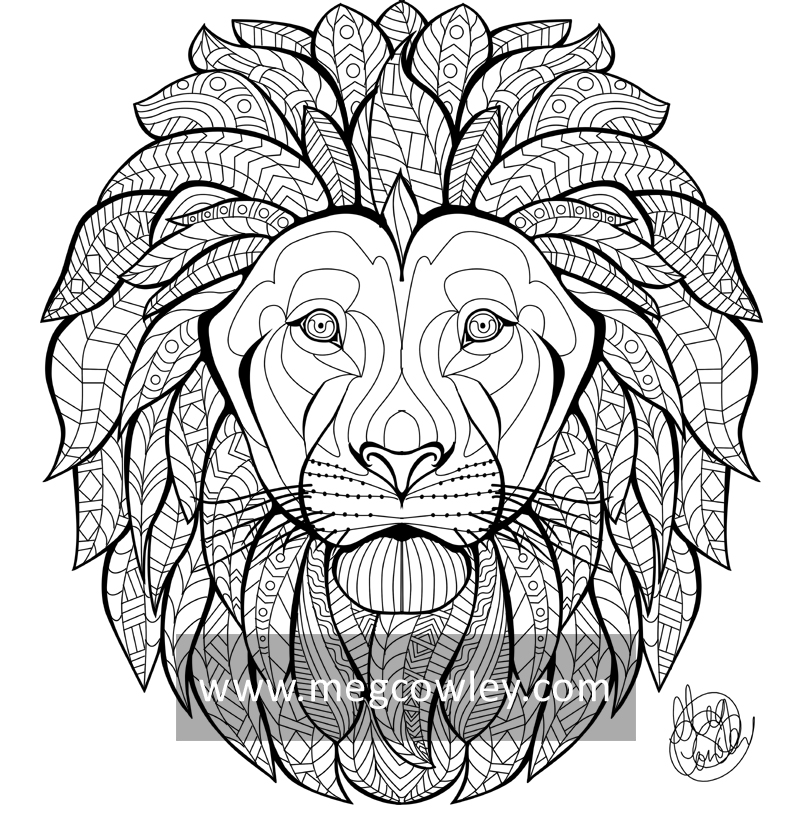 800x813 African Lion (The Exotic Colouring Book) By Megcowley
