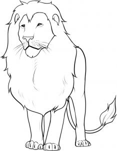 234x302 How To Draw A Lion In 13 Steps How To Draw Drawing