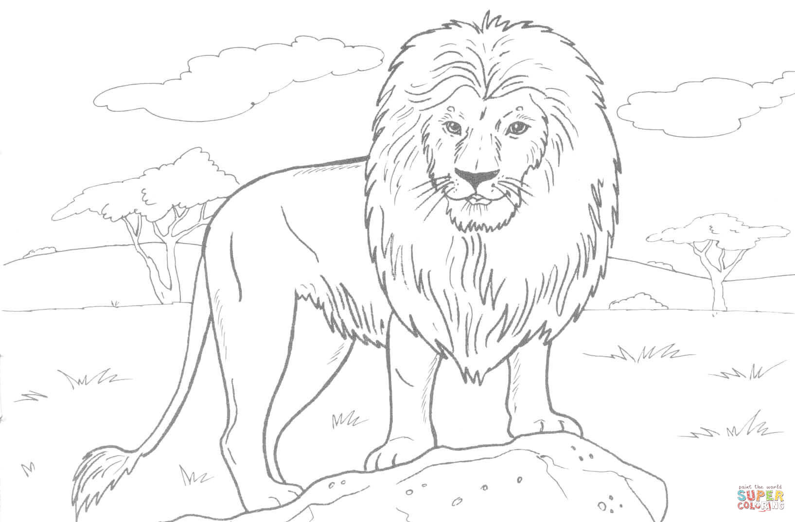 1635x1074 African Lion Drawings African Lion Drawing Easy
