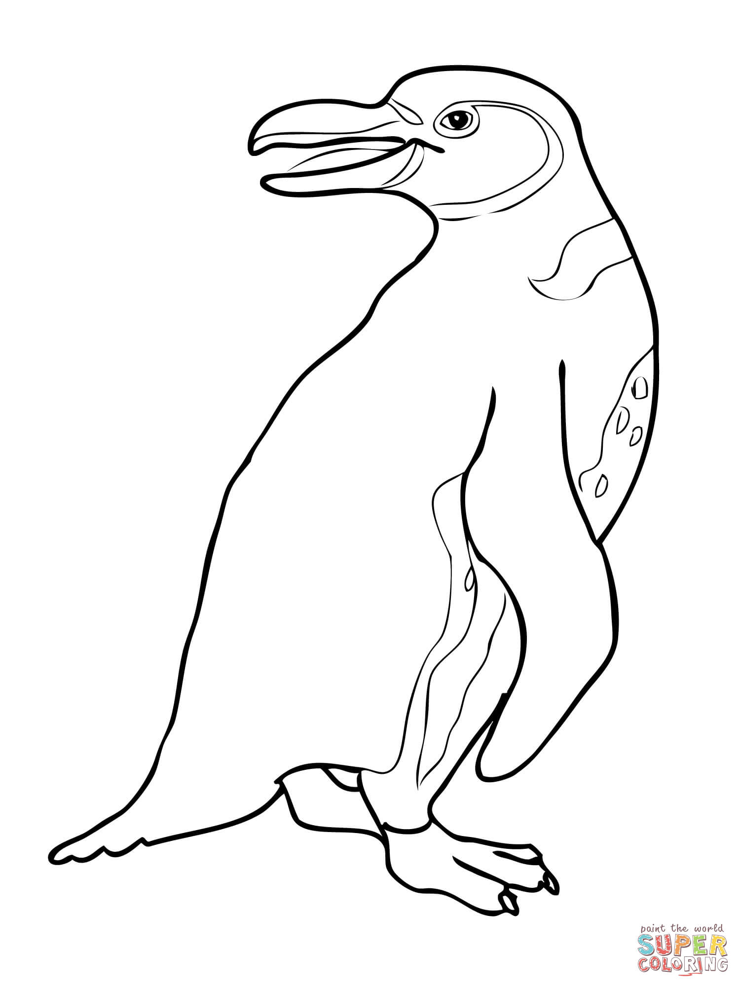 African Penguin Drawing at GetDrawings.com | Free for personal use ...