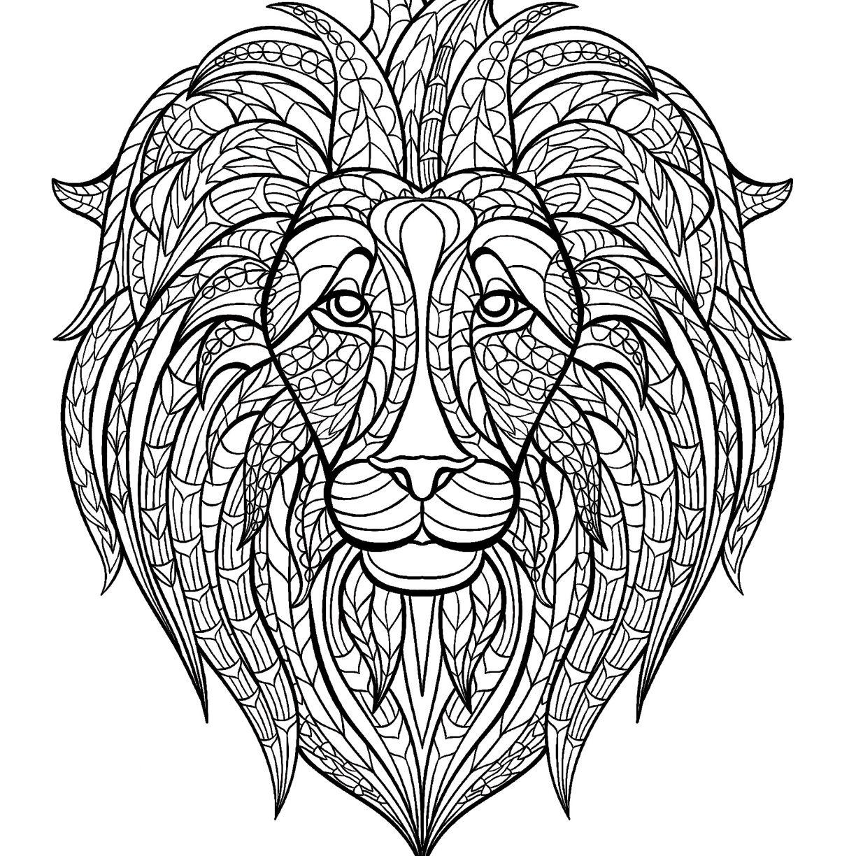 African Safari Drawing at GetDrawings.com   Free for personal use ...