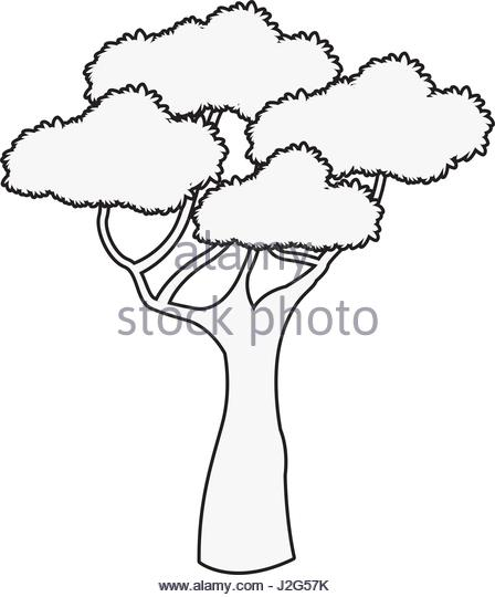 448x540 Illustration Cartoon African Landscape Tree Stock Photos