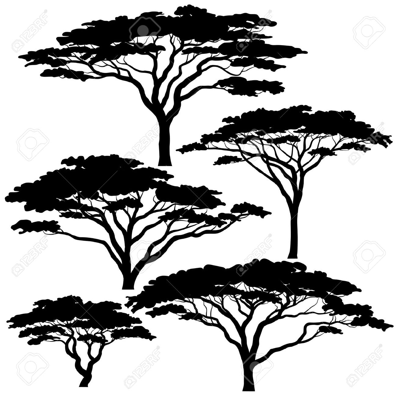 1300x1300 38594229 Set Of Eps8 Editable Vector Silhouettes Of Acacia Trees