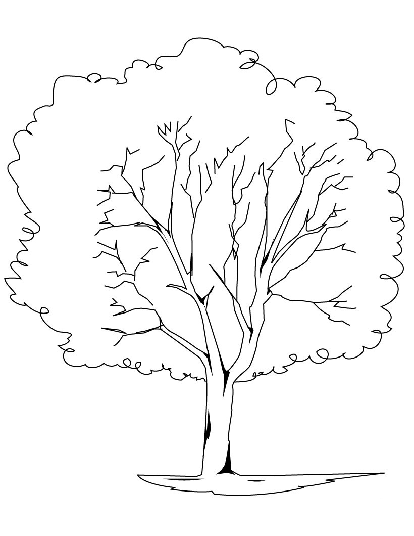 820x1060 Trees Coloring Pages