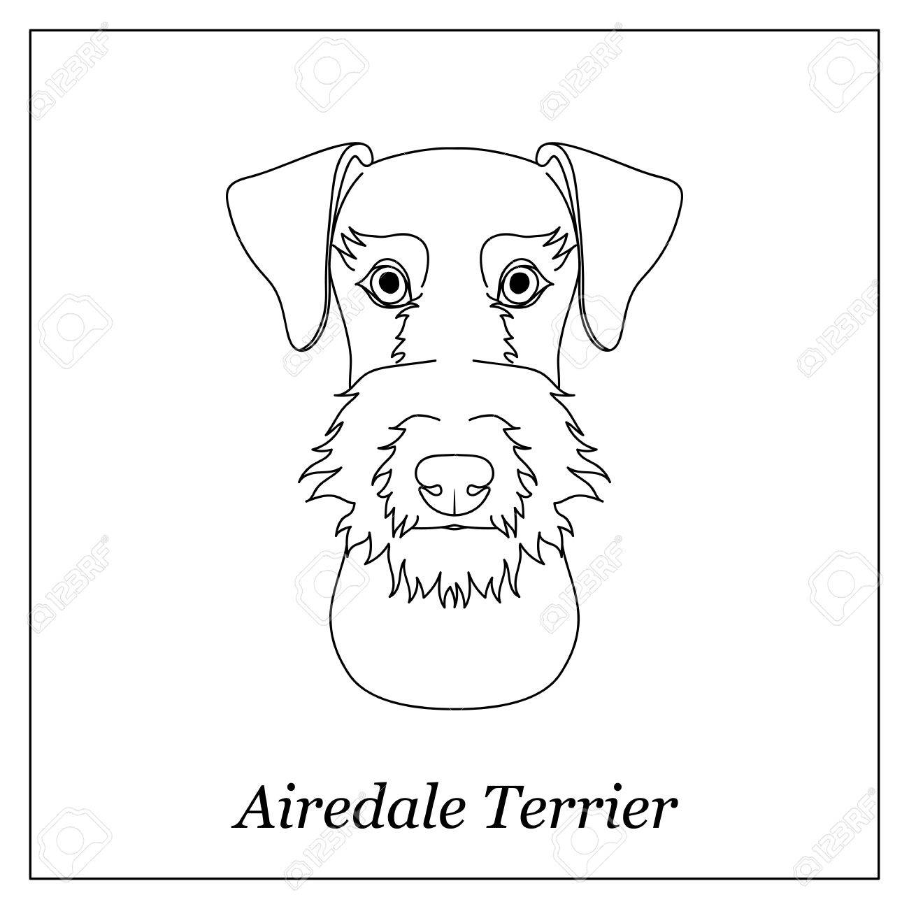 1300x1300 Isolated Black Outline Head Of Airedale Terrier On White