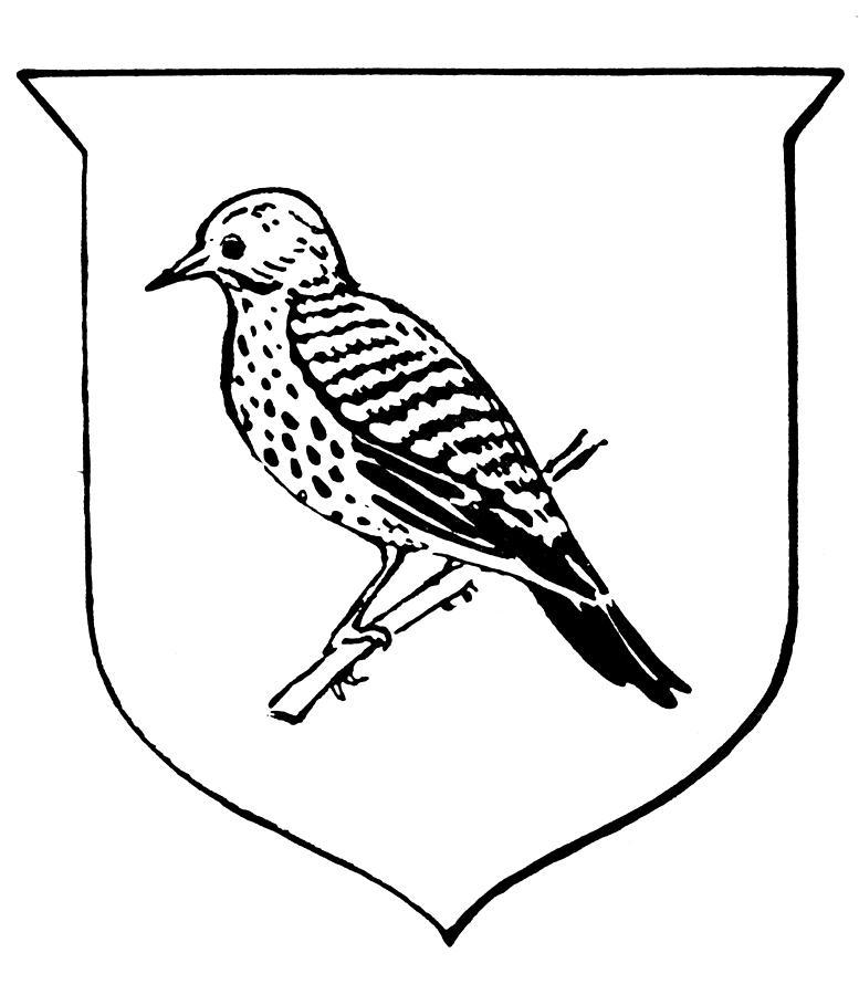 777x900 Alabama State Bird Drawing By Granger