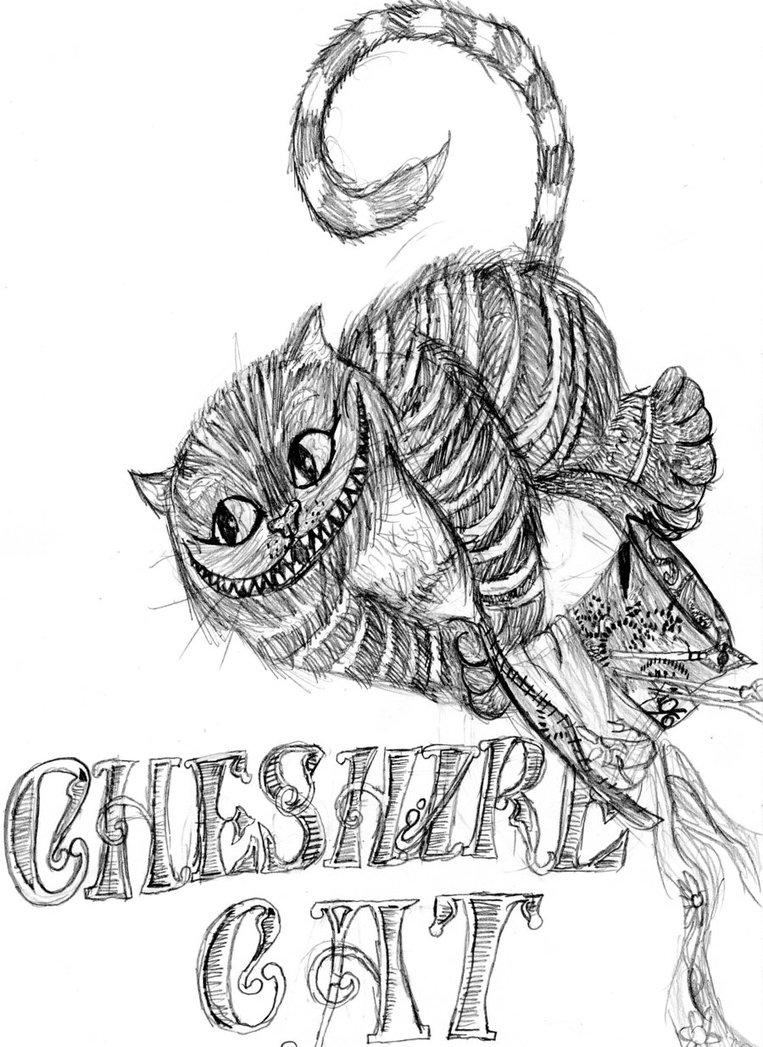 Alice In Wonderland Cat Drawing