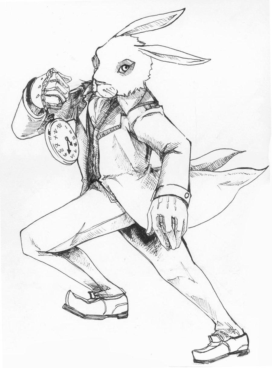 900x1217 White Rabbit Drawing