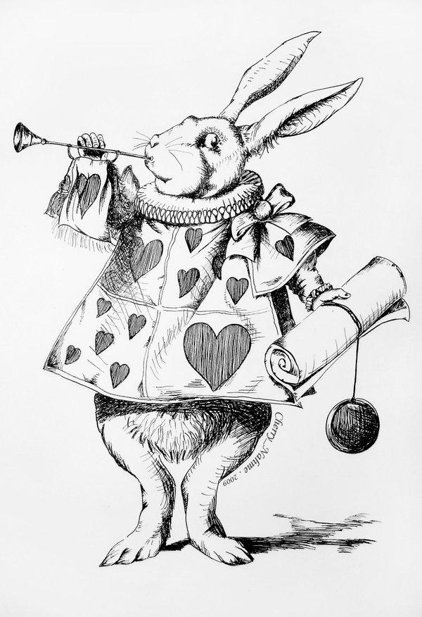 600x876 White Rabbit As Herald By Cherrynahme