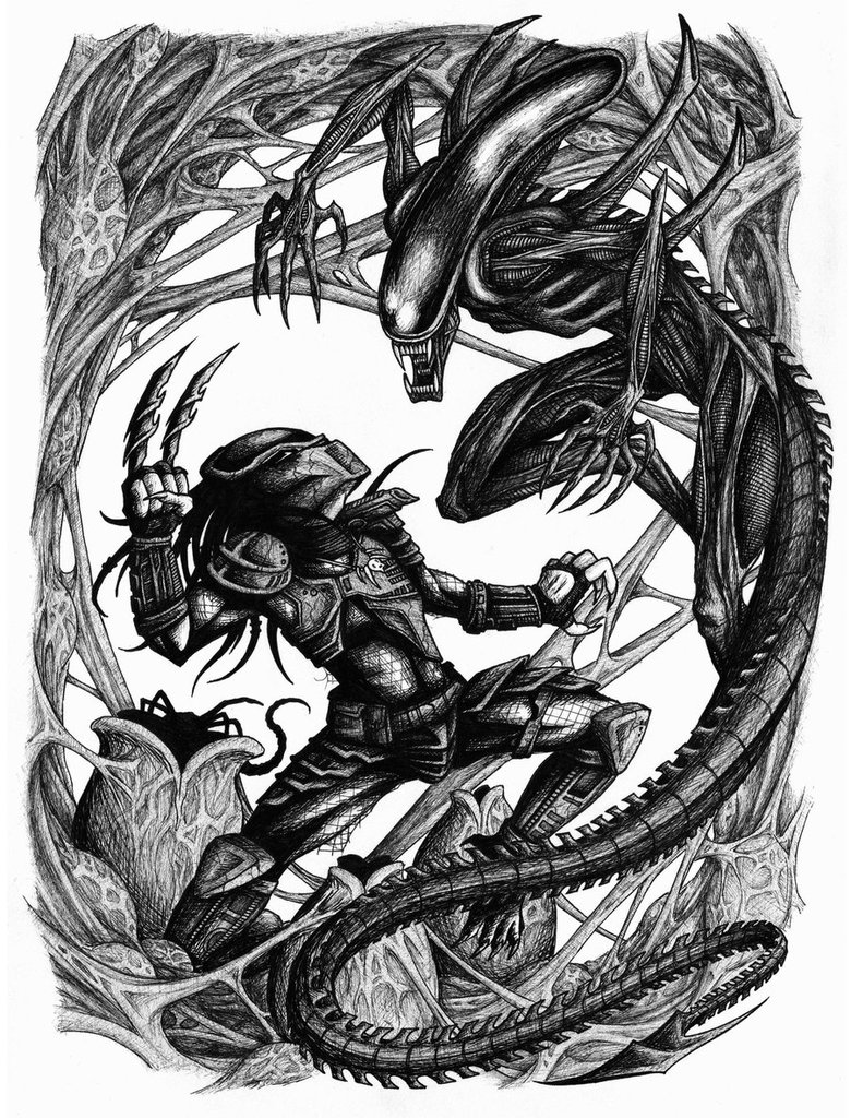 Alien Vs Predator Drawing
