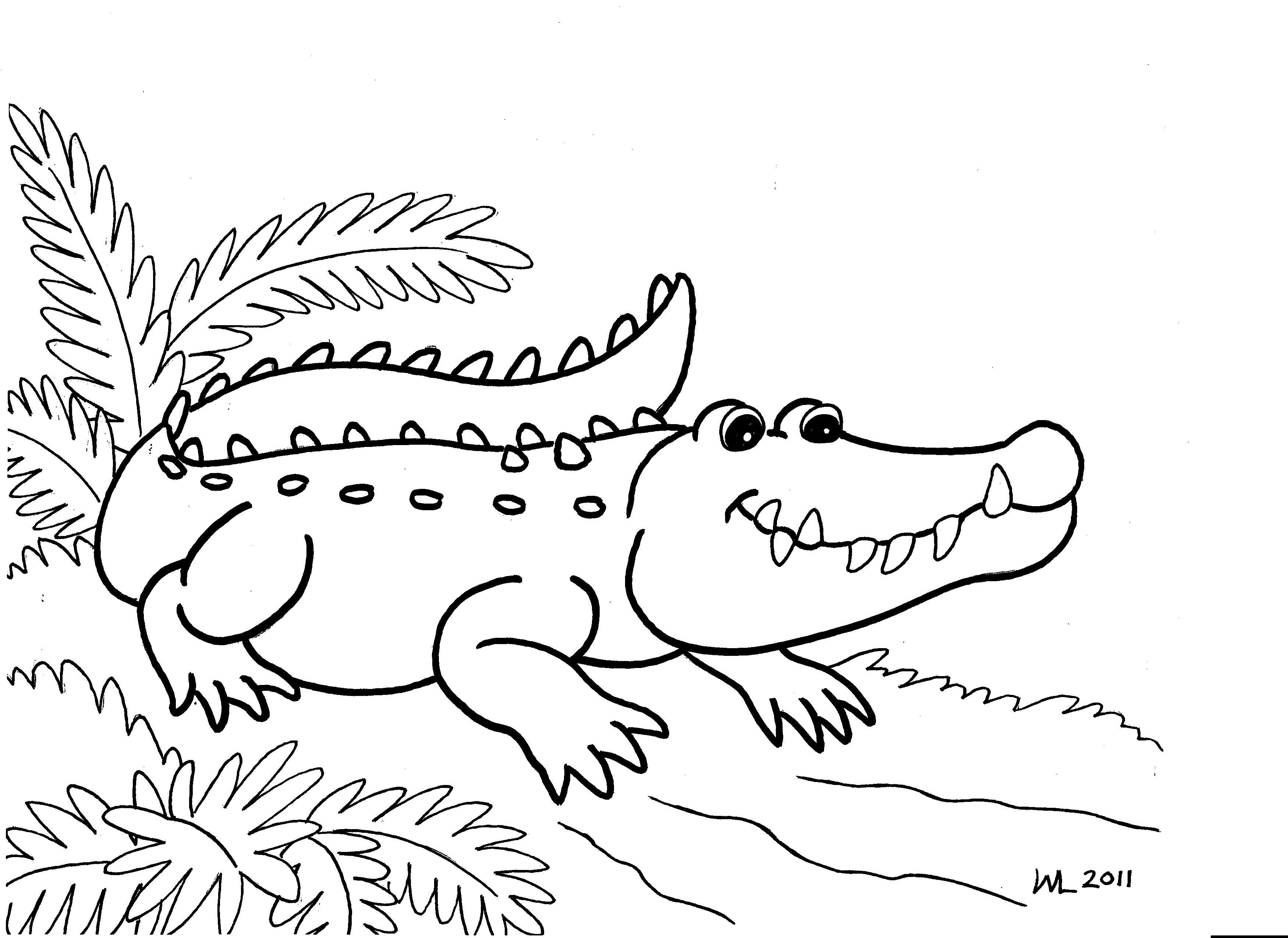 3501x2550 Girl Cartoon Alligator Coloring Pages Simple Alligator Coloring