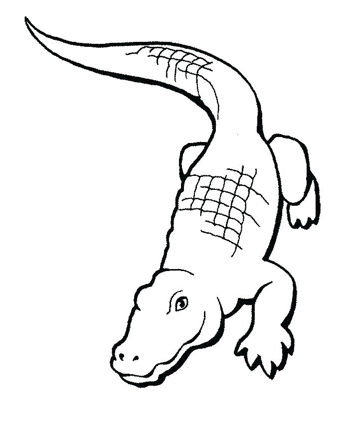 692x863 Alligator Coloring Pages Crocodile Coloring Pages Cartoon