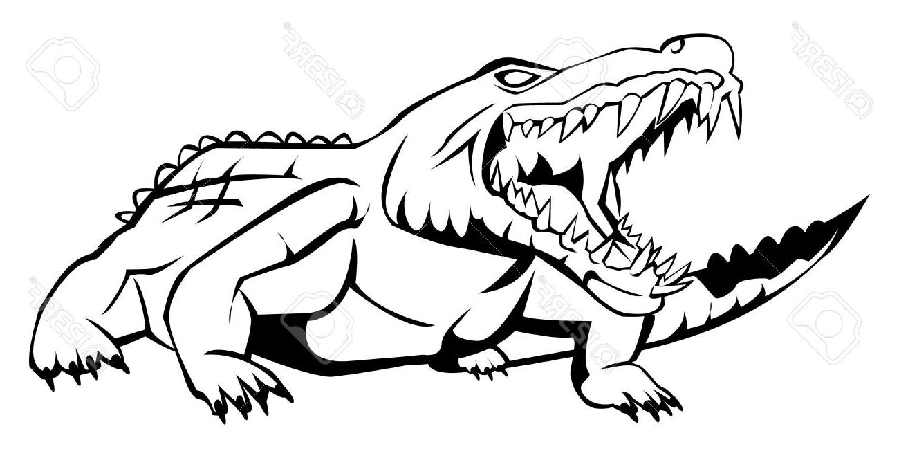 1300x662 Best HD Alligator Drawing Vector Design