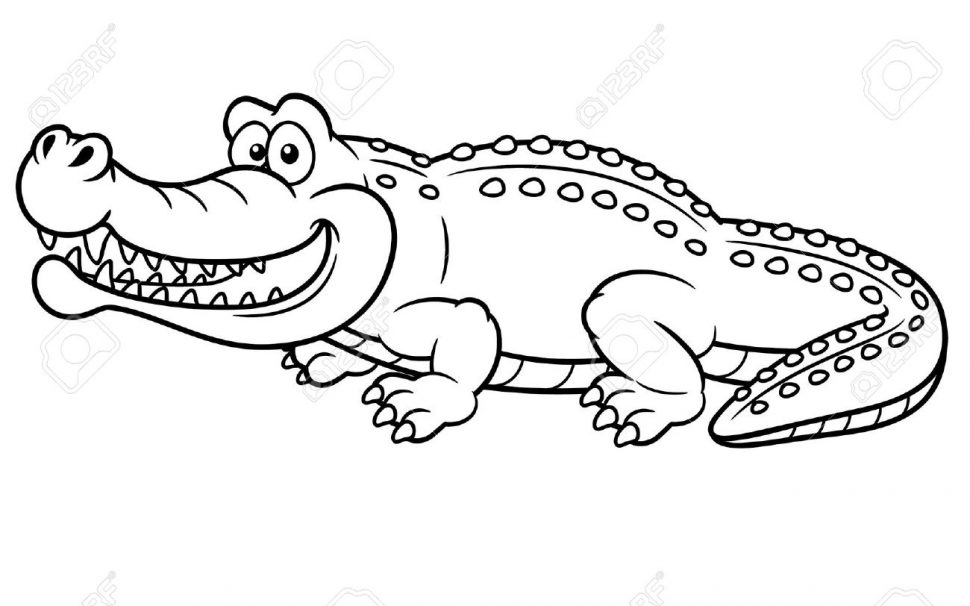 970x606 Coloring Pages Alligator Coloring Pages 2 Alligator Coloring