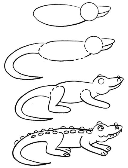 425x559 How to draw an alligator.