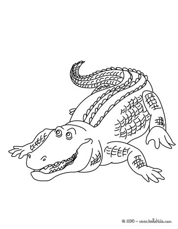 364x470 Alligator Coloring pages, Drawing for Kids, Videos for kids