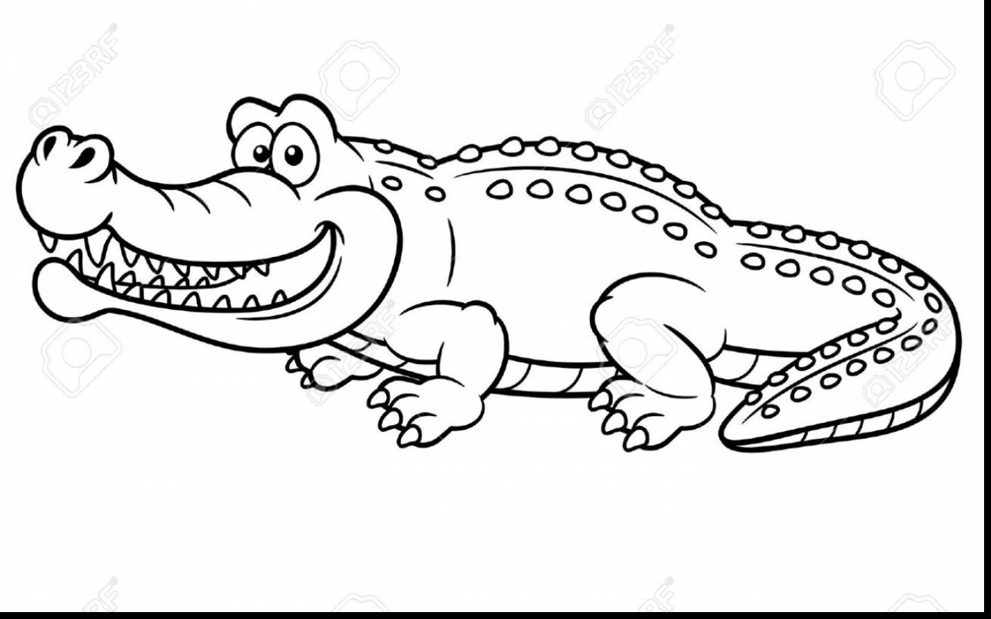 Alligator Drawing Outline at GetDrawings.com | Free for ...