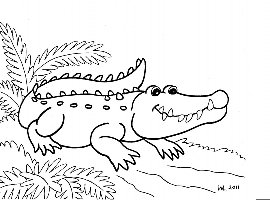 1080x800 Beautiful Crocodile Coloring Page In Free Book Printable Download