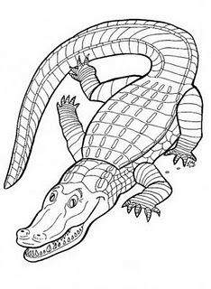 234x320 Crocodile Coloring Pages Kids.jpg MS Pinterest Crocodile