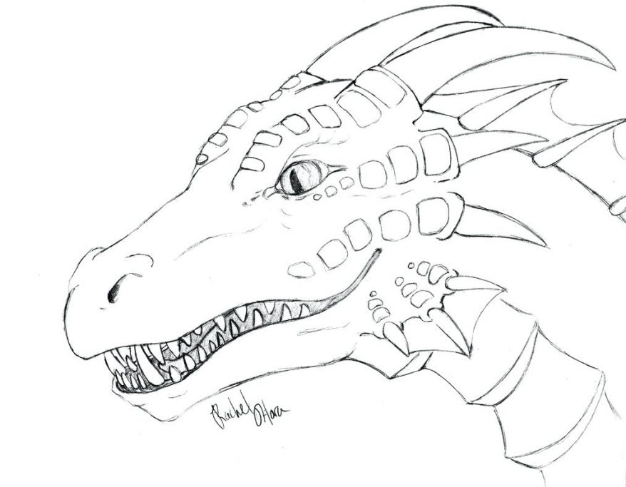 878x683 Free Coloring Pages Of Dragon Outline 111 Remarkable Alligator