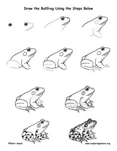 236x305 How to draw an Alligator for kids step by step tutorial How To