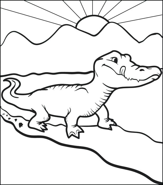 618x700 Alligator Coloring Alligators Coloring Page Alligator Coloring