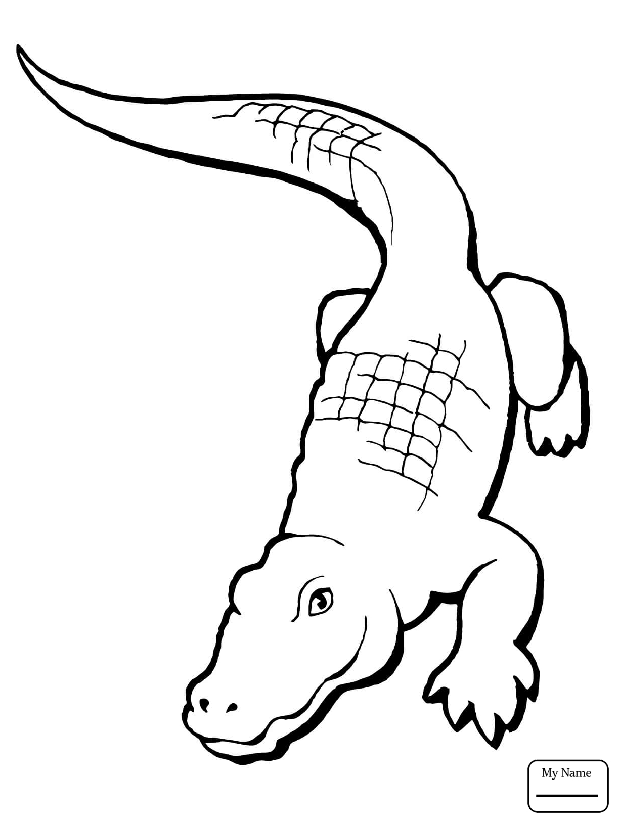 1224x1632 alligators Cartoon Alligator reptiles coloring pages for kids