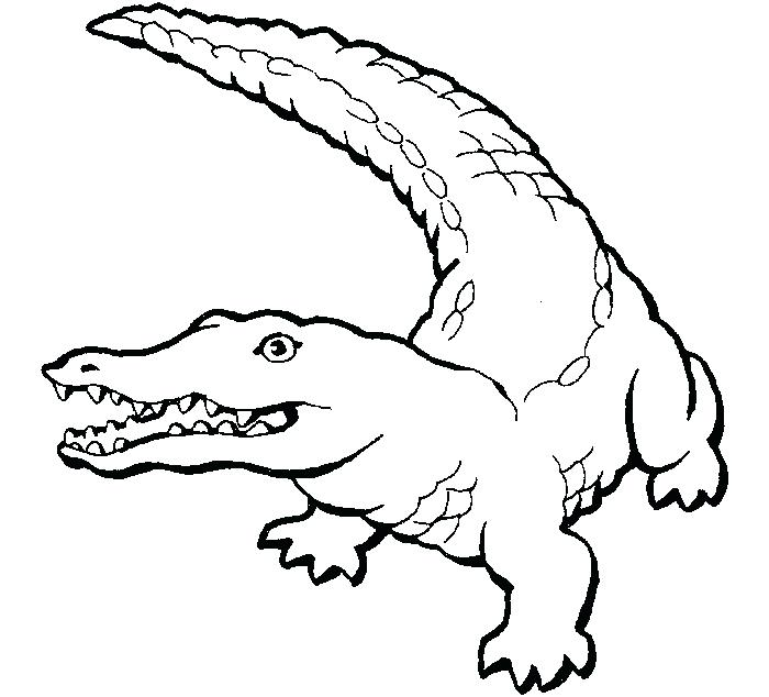 700x634 Alligator Coloring Book Alligator On Evening Walk Coloring Pages