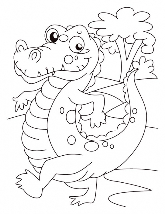 564x730 Alligator On Evening Walk Coloring Page School theme Pinterest