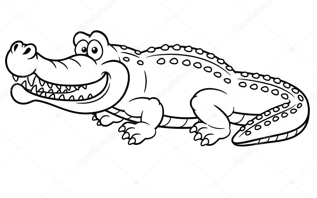1024x640 Alligator Stock Vectors, Royalty Free Alligator Illustrations