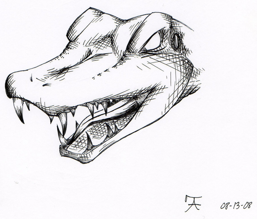 900x768 Alligator tattoo design by Raukozan on DeviantArt
