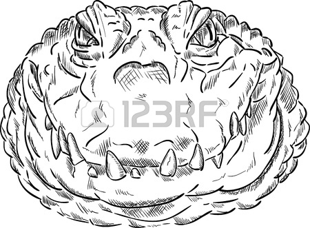 450x331 Crocodile Head Isolated On Background Royalty Free Cliparts