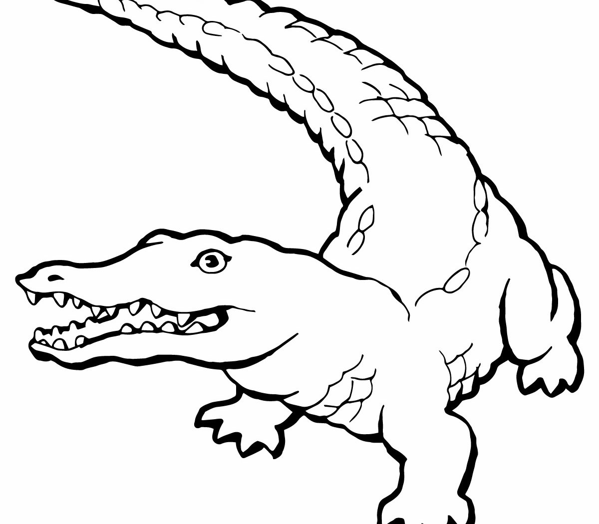 1200x1050 Good Alligator Colorings For Your Picture Free Printable Coloring