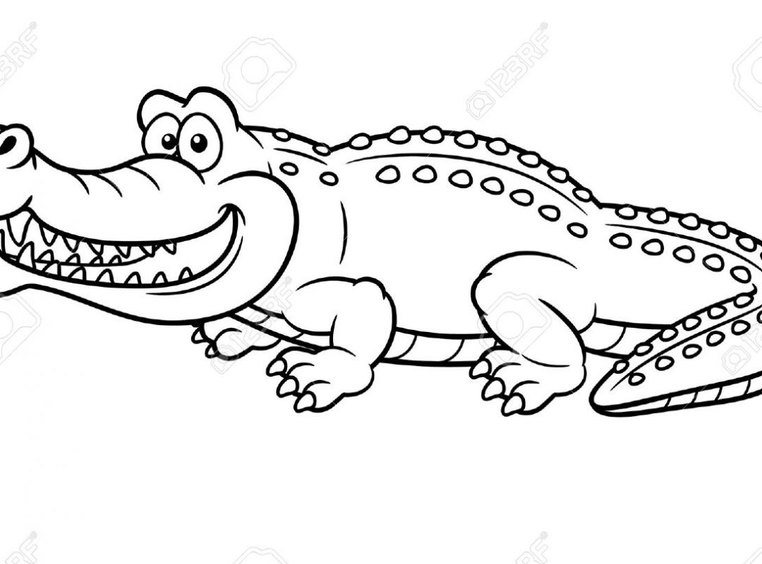 1080x800 To Print Crocodile Coloring Pages On Line Drawings Page Printable