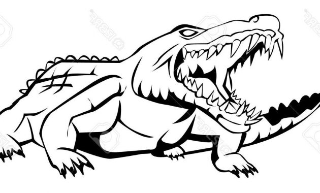 630x380 Alligator Drawing Vector Archives