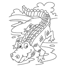 230x230 Top 10 Free Printable Crocodile Coloring Pages Online