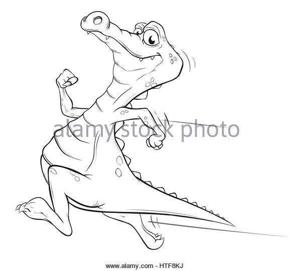 582x540 Alligator Zoo Stock Photos Amp Alligator Zoo Stock Images