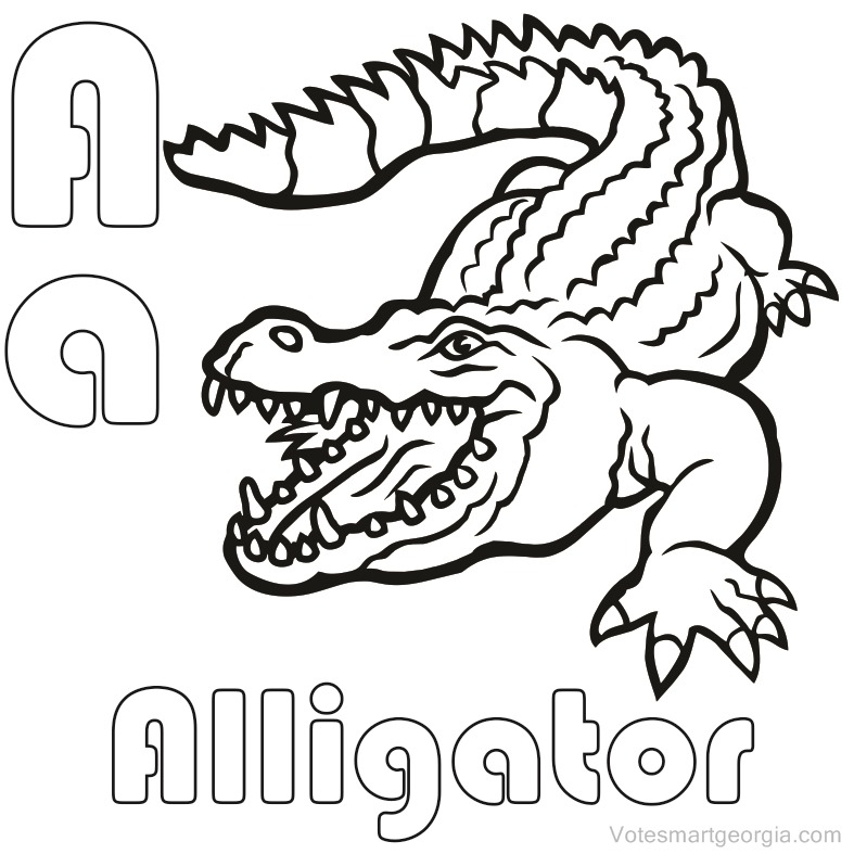 Alligator Line Drawing at GetDrawings.com | Free for personal use ...