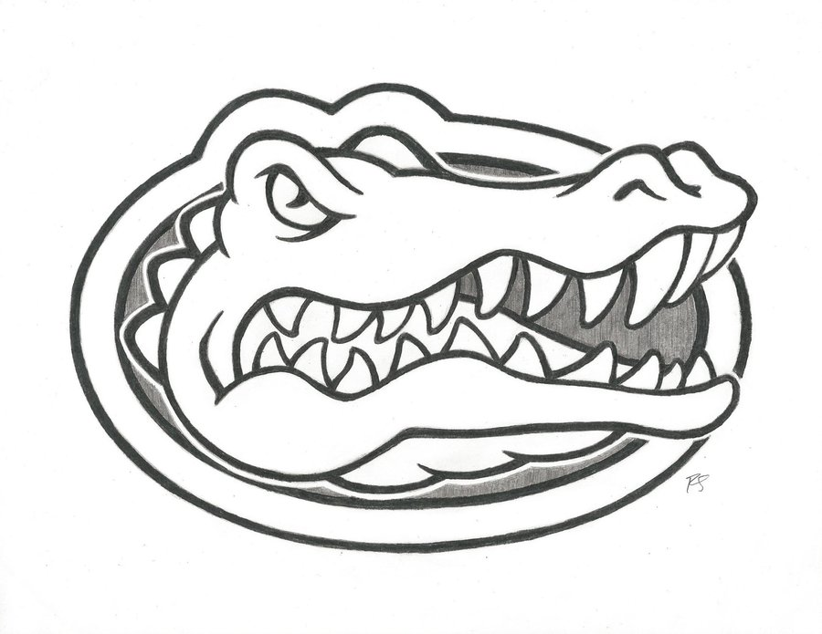 900x695 Go Gators! By Rshaw87