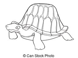 Alligator Snapping Turtle Drawing