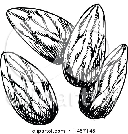 450x470 Clipart Of Cartoon Almonds With Leaves