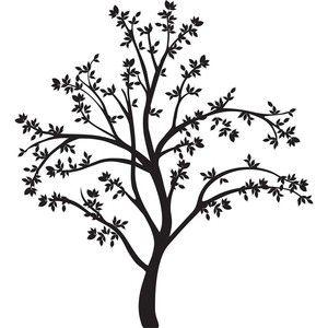 300x300 Almond Tree Line Drawing