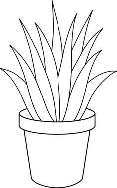 236x380 Aloe Vera Sketch By On @