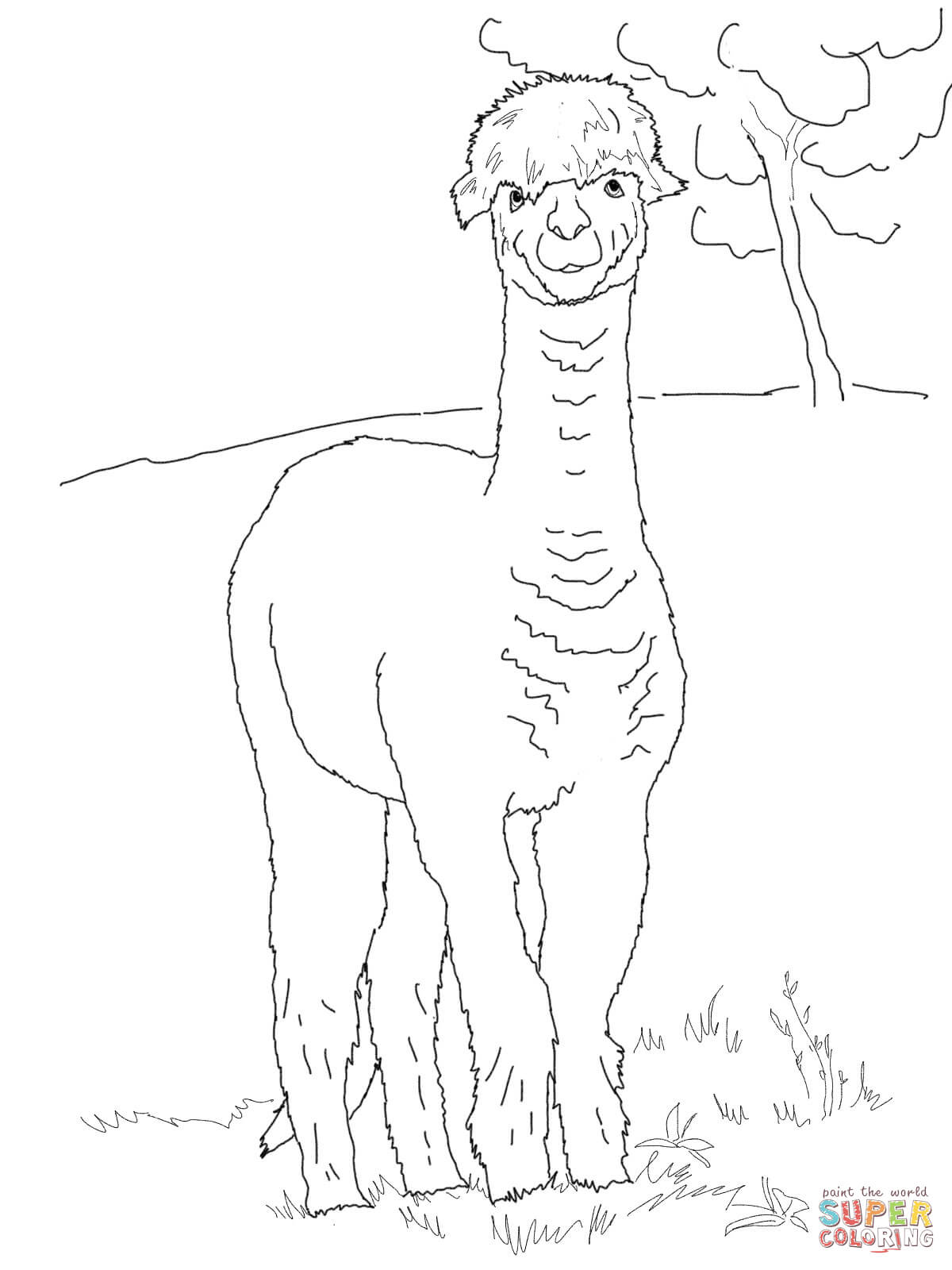 1200x1600 Funny Alpaca Coloring Page Free Printable Coloring Pages