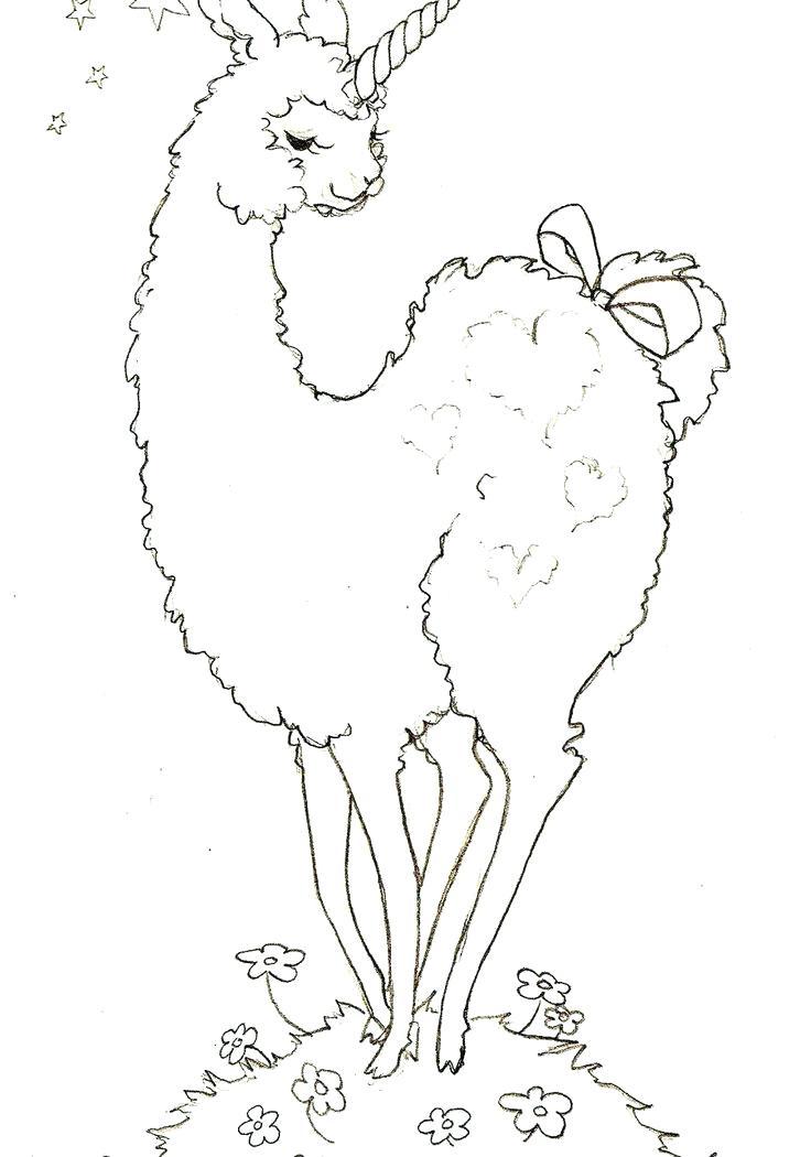 736x1050 Llama Animal Coloring Pages Alpaca Coloring Pages Llama