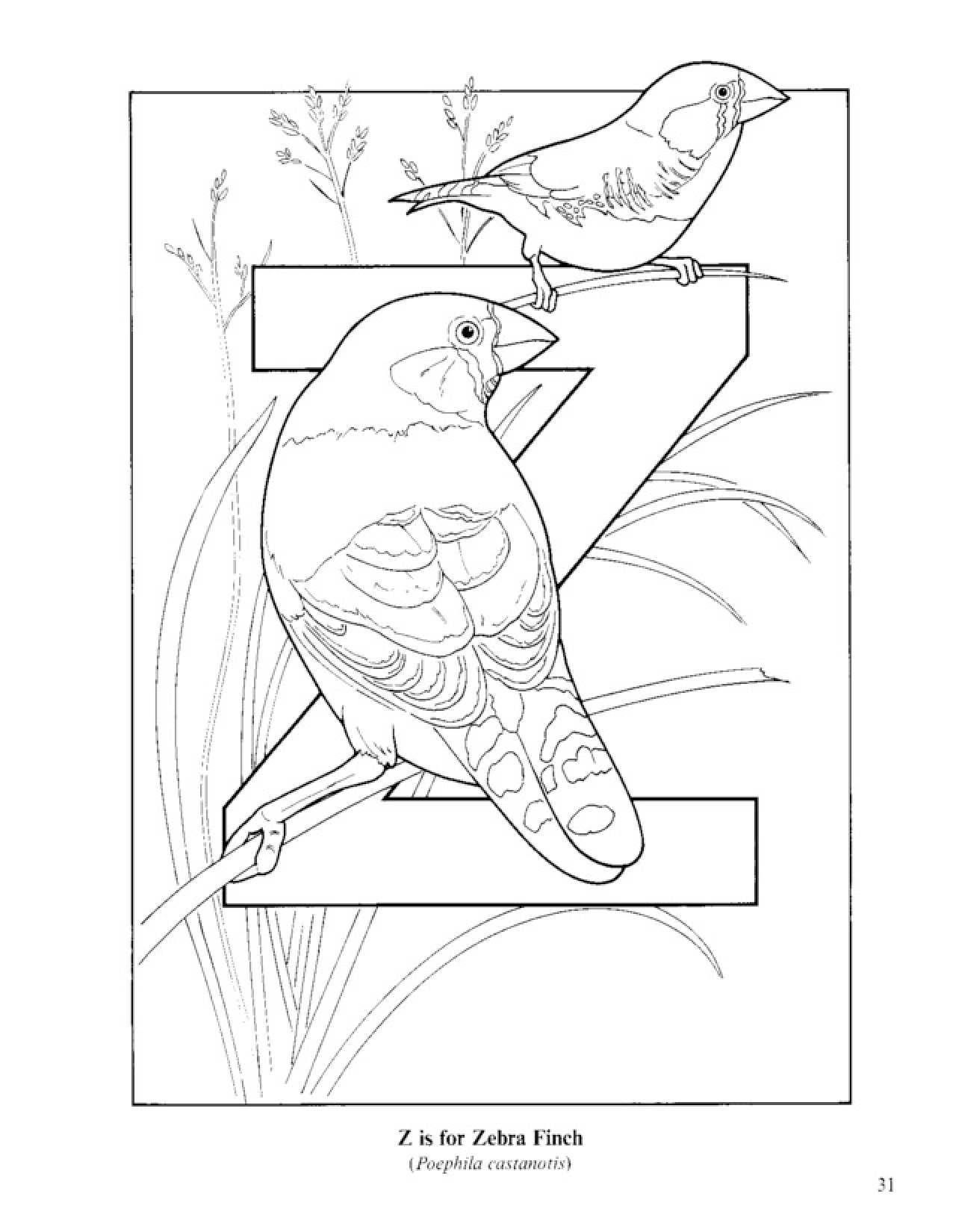 1276x1650 Bird Alphabet Coloring Pages Printable Download For Kids (28